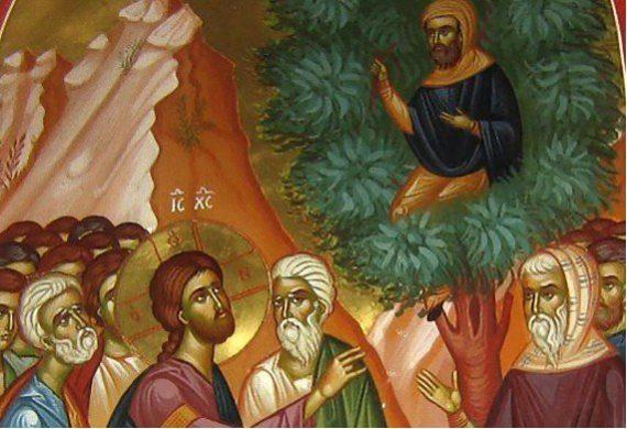 Το θαύμα της μετανοίας - Κυριακή ΙΕ΄ Λουκά - του Ζακχαίου
