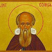 Ο άγιος Κόμγκαλ της Ιρλανδίας