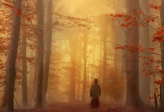 Η πνευματική ζωή ειναι έργο της Ακτίστου Χάριτος του Θεού