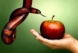 Οι συνέπειες της αμαρτίας