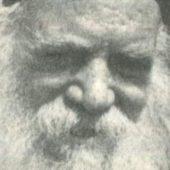 Γέρο-Μιχαήλ ο Καυσοκαλυβίτης