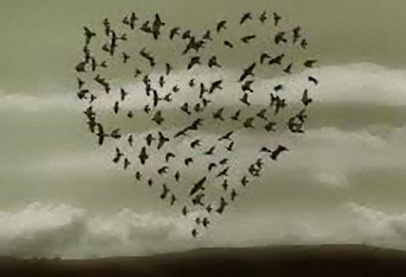 Mήπως είμαστε ζητιάνοι της αγάπης ;