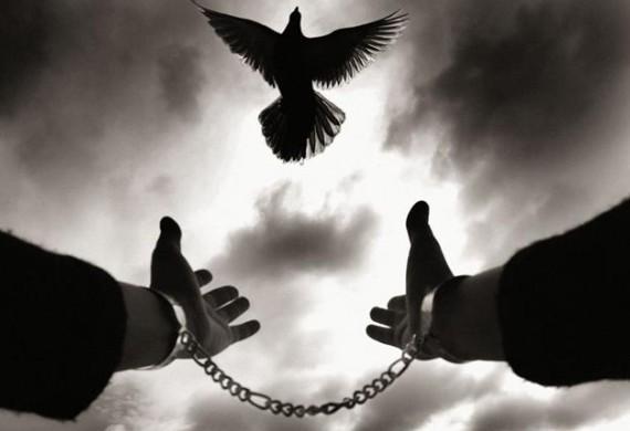 Η ελευθερία του ανθρώπου
