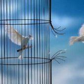 Η αληθινή ελευθερία
