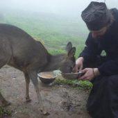 Η δυναμική της καλοσύνης